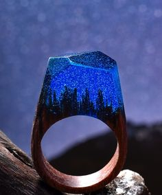 Snowy Mountains And Undersea Worlds Encapsulated Within Wood And - Inside each of these wooden rings is a beautiful hidden world