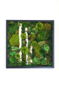 """Moss Wall Art ~ Moss Art Work ~ REAL Preserved Moss ~ No Maintenance Required ~ 20""""x20"""" ~ """"Light Break"""""""