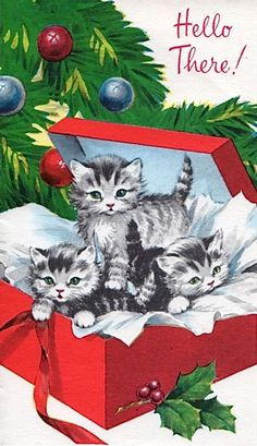 vintage tabby Christmas kittens