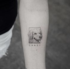 13 of the Cutest Animal Tattoos You Have to See - Tattoo ideas - Animals Mini Tattoos, Small Dog Tattoos, Cute Animal Tattoos, Tattoos For Women Small, Body Art Tattoos, Tattoos For Guys, Cutest Tattoos, Pet Tattoos, Tatoos