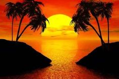 """Sunset with Palms Tree - 18""""W x 12""""H - Peel and Stick Wall Decal by Wallmonkeys by Wallmonkeys Wall Decals, http://www.amazon.com/dp/B0062DF0G8/ref=cm_sw_r_pi_dp_I1RQrb114JN1W"""