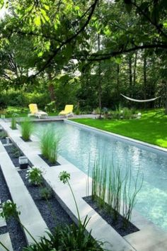 Top Natural Small Pool Design Ideas To Copy Asap - If you want a backyard pool, but don't want to spend tens of thousands of dollars installing it, then a natural swimming pool is the way to go. Natural Swimming Pools, Swimming Pools Backyard, Swimming Pool Designs, Indoor Pools, Lap Pools, Tropical Pool Landscaping, Backyard Landscaping, Landscaping Ideas, Backyard Ideas