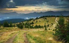 Imagen de field, landscape, and places