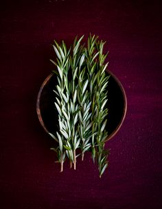 fresh rosemary...I use it all the time and if you make soup with it, be sure to add the sticks...yes, the sticks!  The flavour is strongest in them.  Of course discard them before eating though ;)