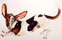 Bassett Hound 2 Original Ed Kagimu Watercolour by RhysEliasGallery