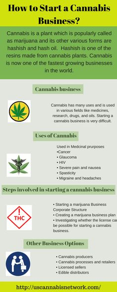 How to Start a Cannabis Business? https://www.liveinfographic.com/i/how-to-start-a-cannabis-business/ Tags: #infographic  #infographics #popular #pinterest #pinterestinfographics