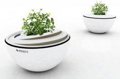 eco - natural pot