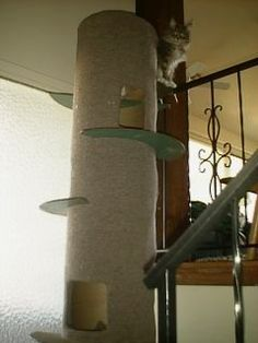 DIY Elegant and solid cat tree for larger kitties. Another one of those unique cat trees that any cat would claim and their people can live with. http://www.mainecoons.org/g/cattree1.jpg
