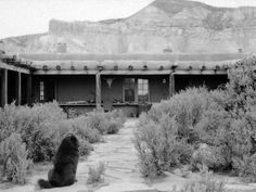 Ghost Ranch, in Abiquiu, New Mexico was Georgia O'Keefe's home.  I used to stand across the road to see her bring in her milk.
