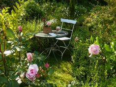 I hope my garden will once look like this