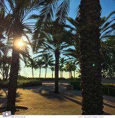 Florida #1: Einreise in die USA & Miami Beach | MrsBerry - Leben und Reisen mit Kind