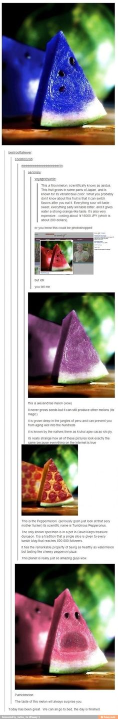 "Because a lot of people on Pinterest seem to really believe in this blue ""moonmelon"", I've decided to dissuade all such thoughts. Here is the tumblr feed that clearly shows the lack of authenticity."