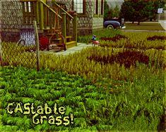 CAStable Grass