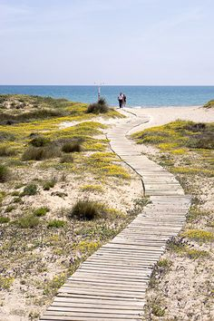 The Southern Beaches on http://valencia.for91days.com