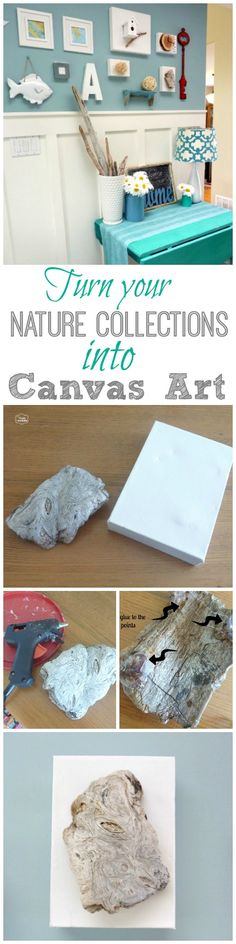 Turn Nature and Holiday Collections into Nature Canvas Art