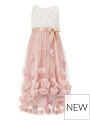 Pretty flowers take centre stage in our Rosie high-low dress for girls. With a graceful layered skirt adorned with delicate roses and a bodice of floral lace. Rose Pink Dress, Pink Floral Dress, Floral Lace, Floral Dresses, Bella Wedding Dress, Floral Applique Dress, Lace Applique, Girls Dresses, Flower Girl Dresses
