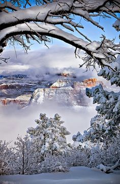 Beautiful snowscape.