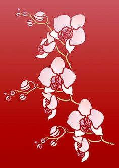Little Orchid Stencil. Moth Orchid Stencil  http://www.pinterest.com/ebanfy/templates/