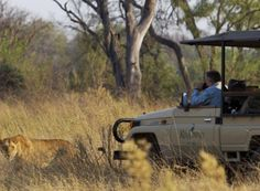 Travel to Botswana with the experts! Bench Africa have handpicked our top selling tours in Botswana, just for you.