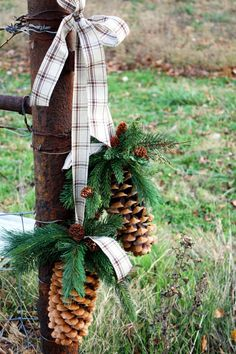 Pinecones in the Country...love this idea!