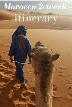 The perfect Morocco 2 week itinerary #morocco #travel #itinerary #marrakesh #africa #casablanca #rabat #sahara #chefchaouen