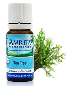 Amrita Aromatherapy Organic TeaTree Essential Oil Antibacterial Antiviral Antifungal Antiseptic and a Powerful Immune Stimulant 10ml *** BEST VALUE BUY on Amazon