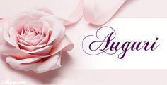 Una rosa per dirti tanti Auguri