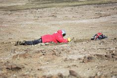 Lying down on the job!  Looking for fossils in the Antarctic.