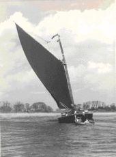 Albion (wherry) - Wikipedia