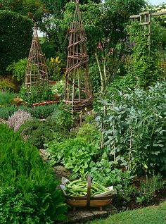 The French Potager Garden. A potager is the French term for an ornamental vegetable or kitchen garden. This design is to provide a garden of abundance in an aesthetically pleasing manner. What a beautiful way to plant flowers, fruit, vegetables, and herbs
