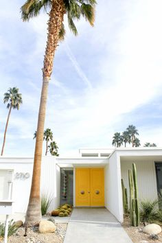 THE DOORS OF PALM SPRINGS