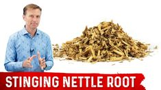 5 Benefits of Stinging Nettle Root - YouTube Health And Wellness Center, Dr Berg, Inflammation Causes, State Foods, Health Questions, Shortness Of Breath, Self Conscious, Nutrition Program, Dog Food Recipes