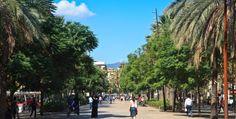 La Rambla del Raval - Everything Barcelona