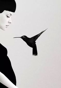 black and white - woman with bird - illustration - Ruben Ireland Bird Illustration, Illustrations, Digital Illustration, Logo Label, Ireland Pictures, Black And White Photography, Photo Art, Monochrome, Portrait Photography
