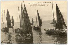 Industrie sardinière bretonne