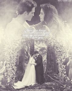 Images and quotes from breaking dawn | Breaking dawn quote