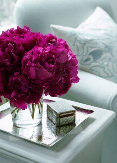 fuschia floral against ice blue