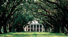 Oak Alley Plantation  I remember sitting in the grand entrance of this wonderful plantation in my white patent leather shoes and white brocade dress waiting for my grandmother as she visited the lady of the house. I was about 5 or 6 years old. I am now 54.