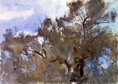bofransson:    Treetops against the sky - John Singer Sargent