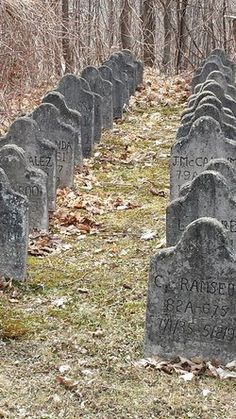 Prison Cemetery in Attica, New York. These are tombstones of the inmates that have both numbers and names on them. Some tombstones have only numbers, other prisons are financed by the families to put the names on the tombstones, and the prison shall also number the tombstone for clarity.