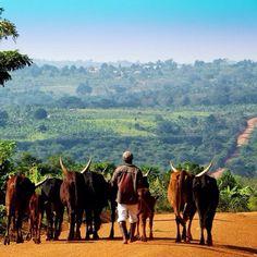 Be More • Fijn weekend! #bemore #vrijwilligerswerk #reizen #afrika #azie #weekend