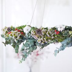 Back when I had time to make actual wreaths that hung from the ceiling - as opposed to this years thrown together mini versions. This wreath was my first ever attempt at making a wreath and I had zero knowledge of how to go about it...but I figured how hard can it be? Turns out it was pretty easy. There is a mini tutorial on the blog. Link in bio.