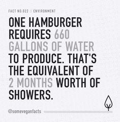 Some Vegan Facts - Fact 022. Source...