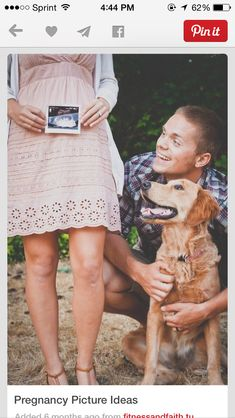 Pregnancy announcement with dog