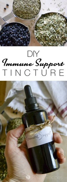 #ad Never made a tincture before? This Easy Immune Support Tincture is a great place to start! And your immune system will thank you... | RaiasRecipes.com