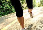 The 10-Week Half-Marathon Training Plan for Beginners