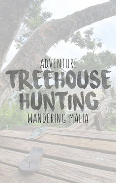 ADVENTURE | TREEHOUSE HUNTING  Sharing a little treehouse hunting adventure on the blog, much needed after a couple of hours of stuffing our face!
