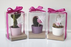 Bomboniera mini pianta grassa Personalized Wedding Favors, Diy Wedding Favors, Wedding Gifts, Wedding Favour Sweets, Winter Wonderland Centerpieces, Baby Shower Souvenirs, Succulent Favors, Baby Shower Photo Booth, Flowers In Jars