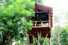 Treehouse in Tangalle, Sri Lanka. This tree house enables you to enjoy the real experience of climbing up a ladder to a safe haven where you are given a warm welcome by the chilly breeze of the sea.   Welcome to a definitive notion of a simple architectural wooden structure locate...