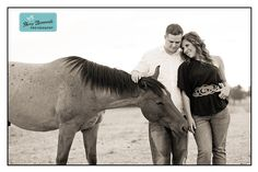 Horses and engagement photos